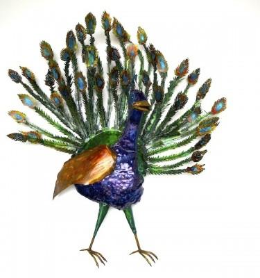 Kartikeya's Peacock